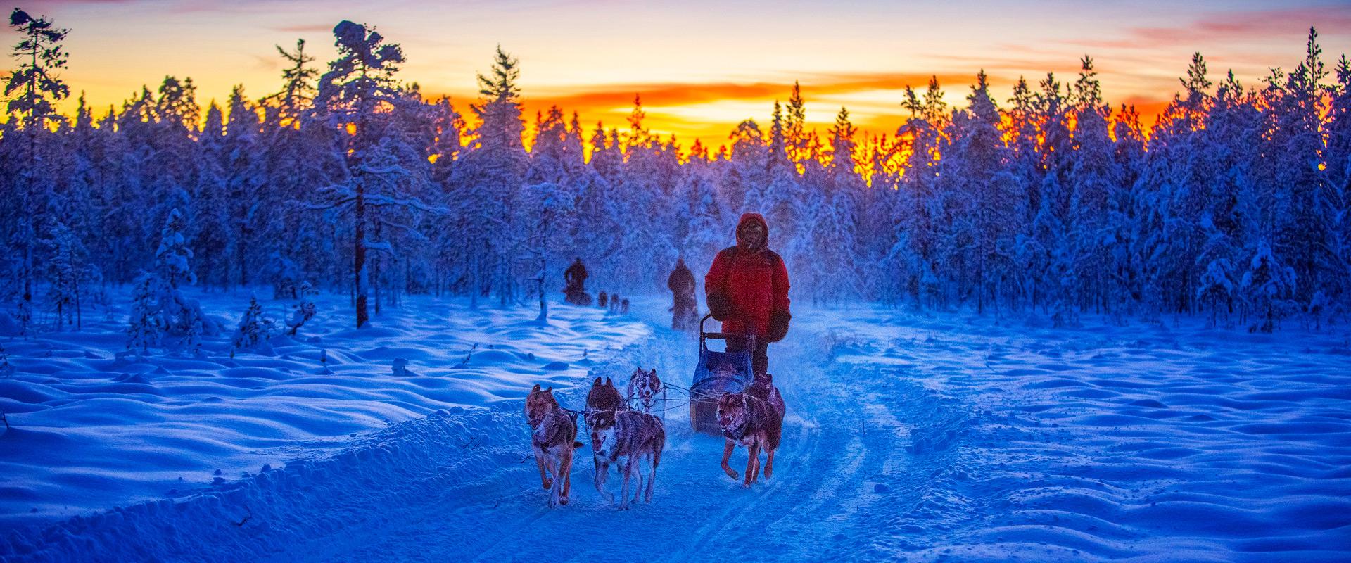 Verken het Noorden AB |  Avonturen in Lapland